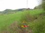 2009-04-26 Willehaus